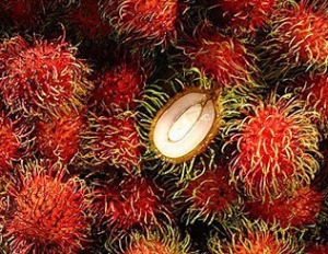 "Rambutan means ""hairy"" in Indonesian and Malay"