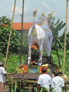 A priest is being cremated within the frame of this bull. Which animal you are cremated in depends on your caste. The very poor often have mass cremations, no animals included. Though many ceremonies are carried out with slow burning wood fires beneath the effigy, a different approach is taken here.