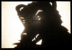 Shadow Bear!